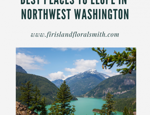 Best Places to Elope In Northwest Washington