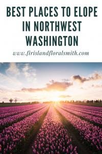 Elope In Northwest Washington